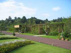 清水公園訪問